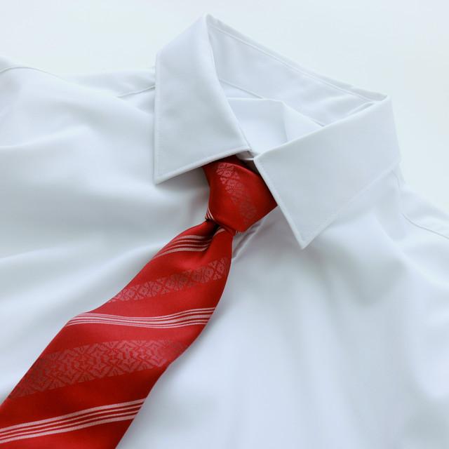 ネクタイ 衿結 えりゆい
